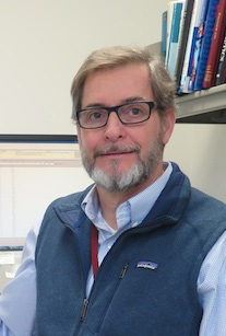 David Maurer