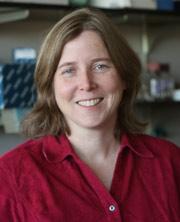 Shelley N. Grimes